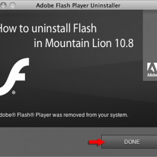 Adobe Flash Player 11.5 For Android