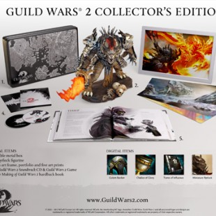 Guild Wars 2 is now live