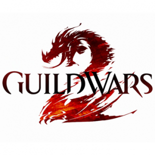 Video gamers eager for the launch of Guild Wars 2