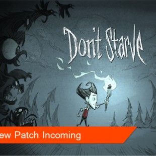 Feedback = Don't Starve Patch!