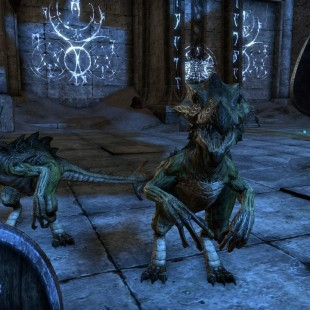 Two New Screenshots For The Elder Scrolls Online Released