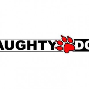 How Naughty Dog Held my Hand in the Wild World of Gaming